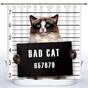 Unique Shower Curtain by Homenon [ Cat Lover Decor Bad Gang Cat In Jail Kitty