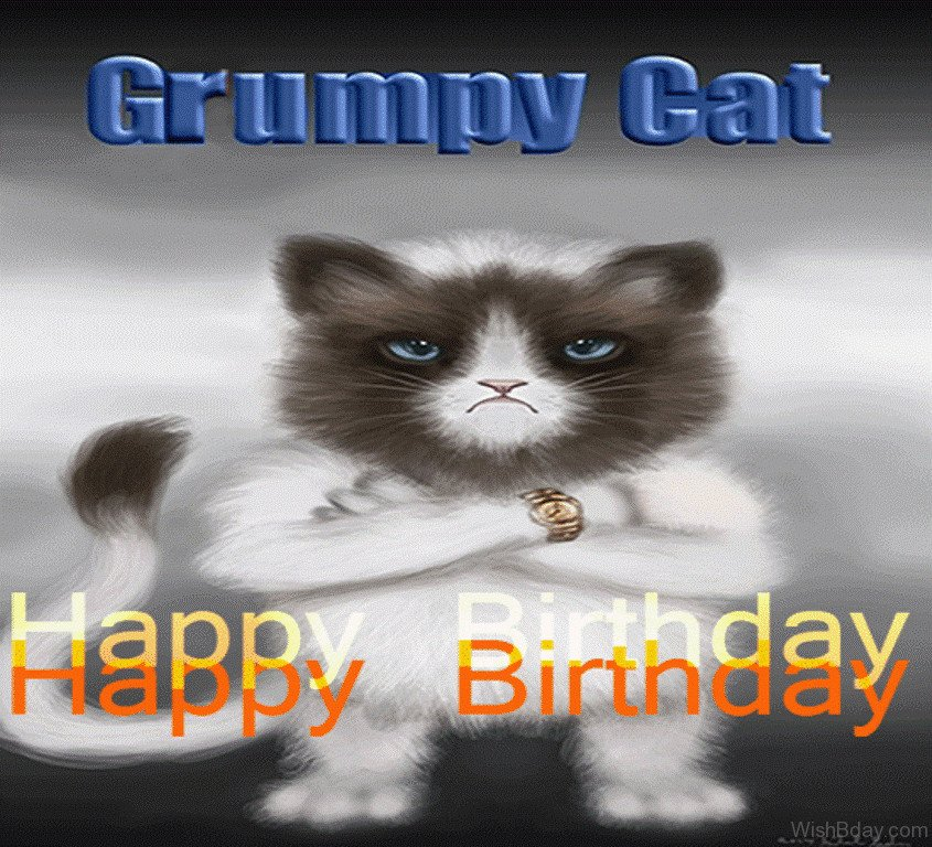 Grumpy Cat Birthday Quotes Grumpy Cat Happy Birthday 58 Grumpy Cat Birthday Wishes Mtm