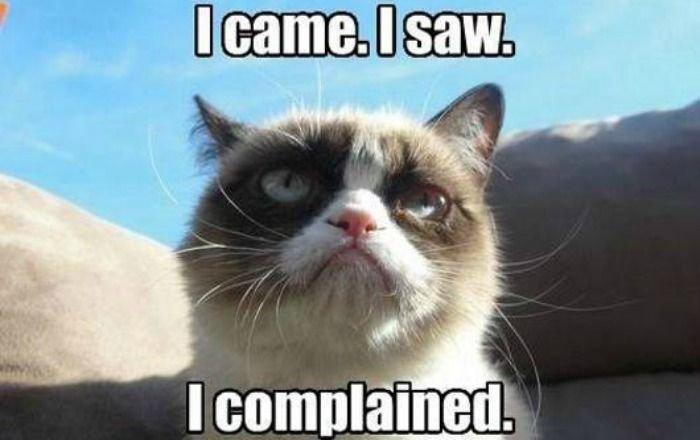 Grumpy Cat I came I saw I plained