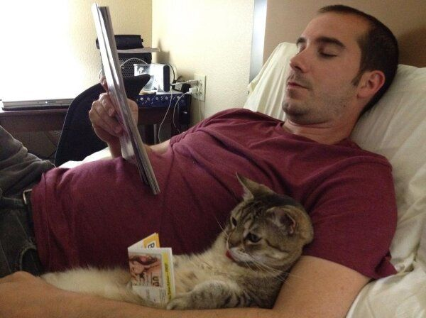 funny cat and owner reading on the bed