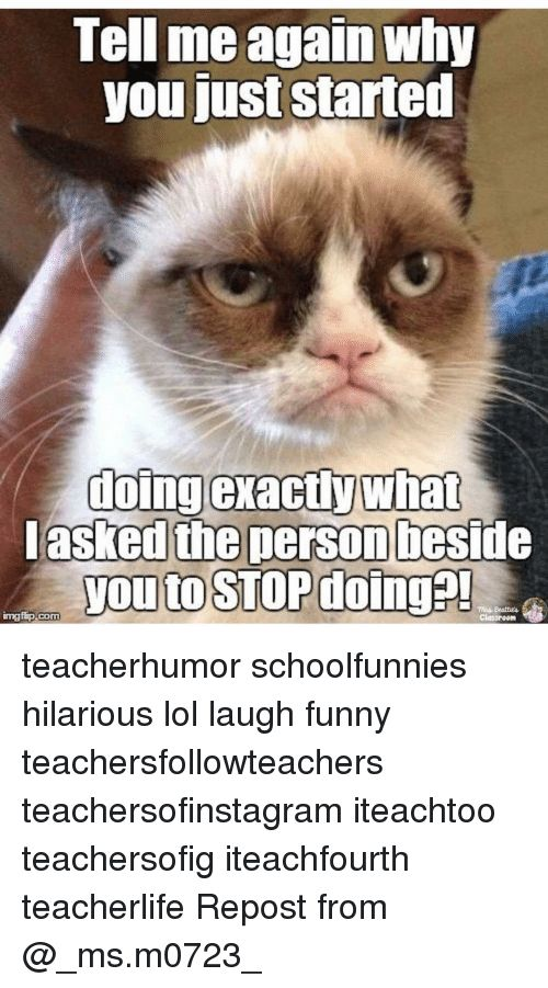 Memes Classroom and 🤖 Tell me again why you just started doing exactly teacherhumor schoolfunnies hilarious