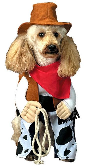 Git along little doggie Dog Costumes Dog Halloween Costumes Pet Costumes For Dogs