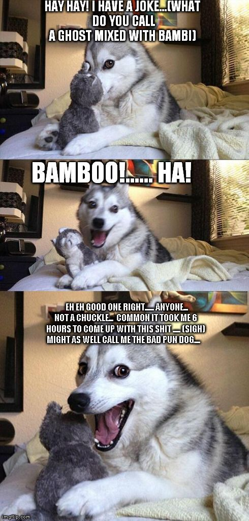 Bad Pun Dog Meme