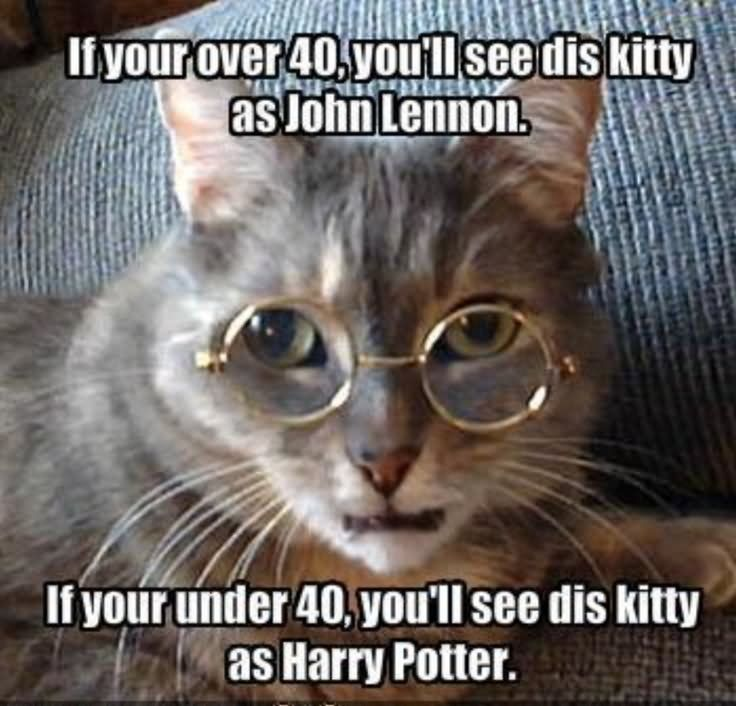 If Your 40 You Will See Dis Kitty As Harry Potter Funny Meme Image