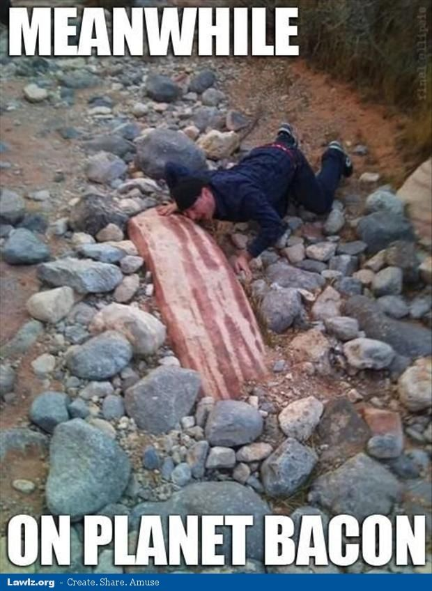meanwhile on planet bacon funny rock meme