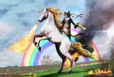 A cat riding a unicorn with a golden desert eagle laser eyes fire breath spit Humor funny cats unicorns rainbows fields awesomeness