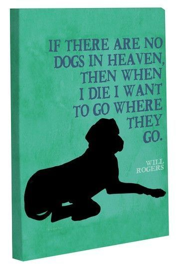 Dogs in heaven I remember you saying