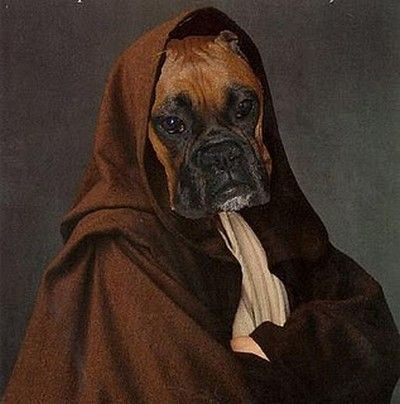 Funny Star Wars dog pictures and humorous puppy pics for the Star Wars fans