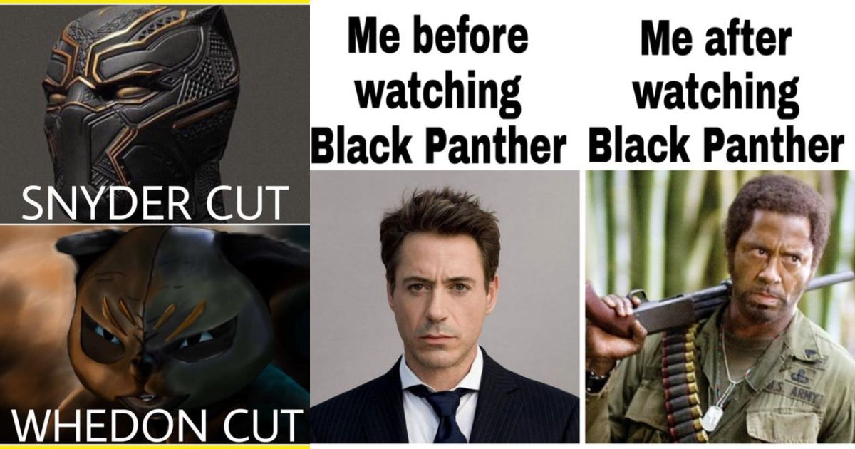 Wakanda Forever 15 Hilarious Black Panther Memes