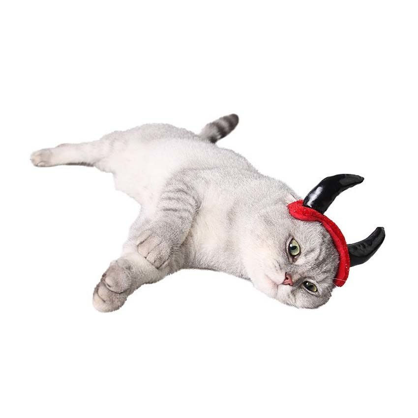 Adjustable Cat Halloween Vampire Hat Pet Cosplay Hats Funny Devil Horn Caps for Pet Cat Dog Necessary Hair Hand Grooming Product in Dog Caps from Home