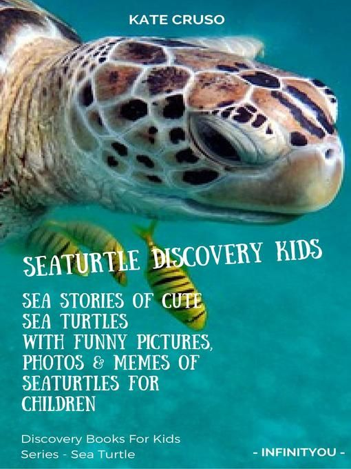 Title details for Seaturtle Discovery Kids by Kate Cruso Wait list