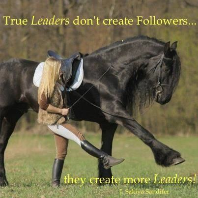 horseriding horserider equine we walk to her I don t lead and you don t follow