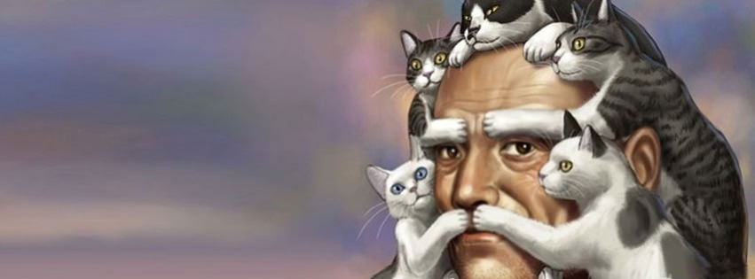 funny cats 4 cover timeline banner for fb