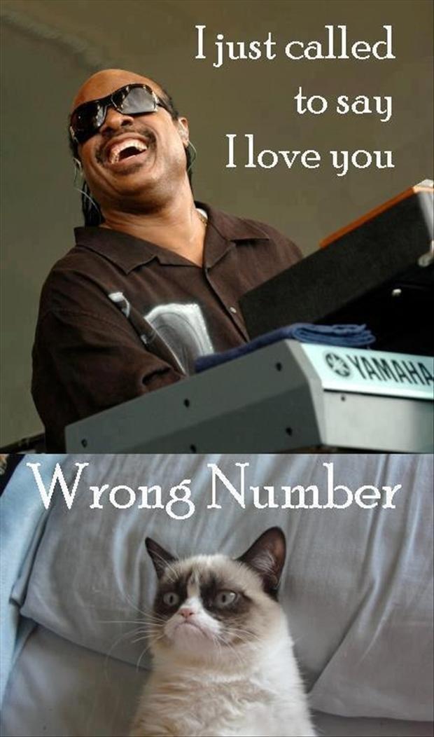 Stevie Wonder Grumpy Cat Meme