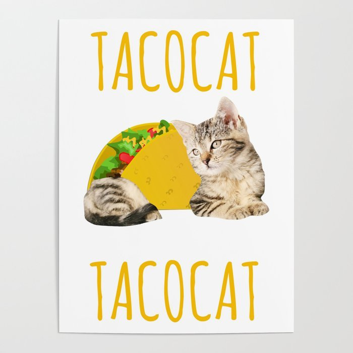 Taco Cat Gift Foo Kitty Cat Funny Mexican Food Present Poster