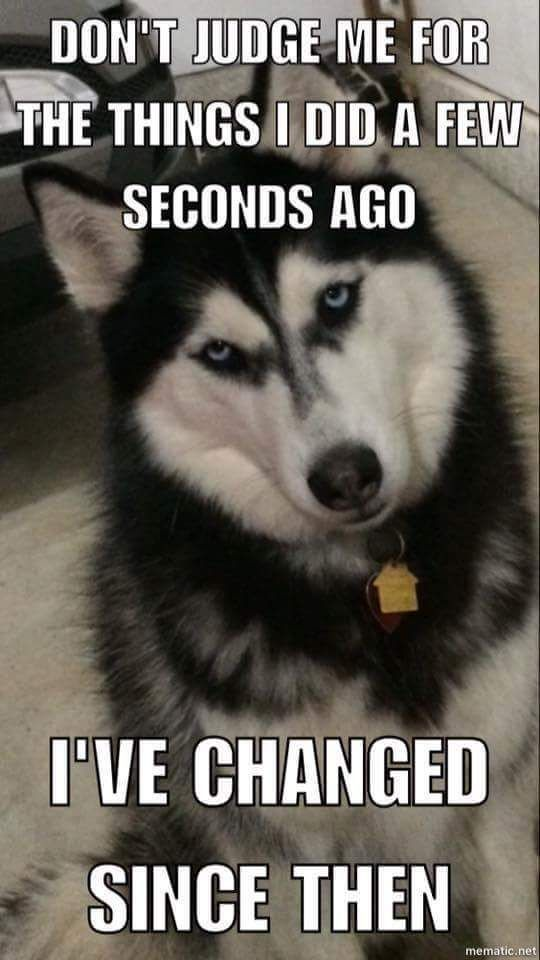 Husky Change Lol
