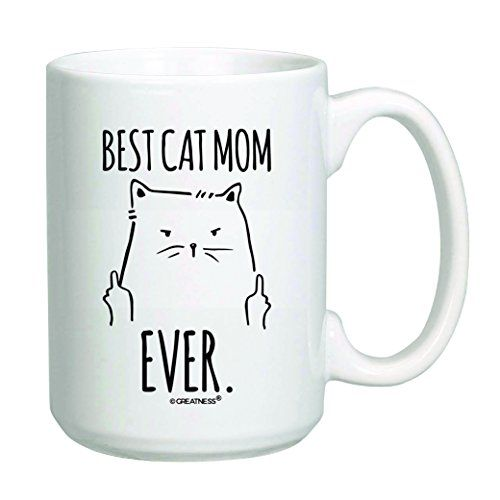 Take the Beautiful Funny Cat Coffee Memes