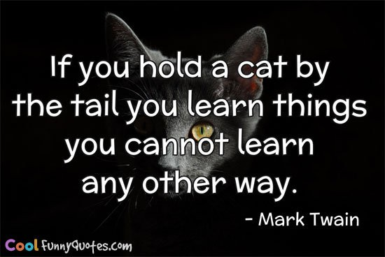 If you hold a cat by the tail you learn things you cannot learn any other
