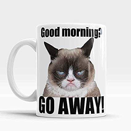 Grumpy Cat Mug Good Morning Go away Funny rude mug Hilarious Funny Grumpy