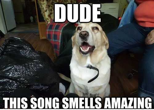 Like a smell man You could taste it too if you really try No wonder listening to music tops the list of fun