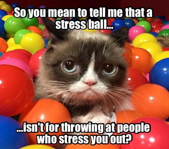 Anger Management with Grumpy Cat