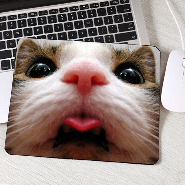 Mairuige Beautiful Funny Cute Cat Pet Animal Pattern s mouse Pad Mini Size 250x290x2MM Easy Torry