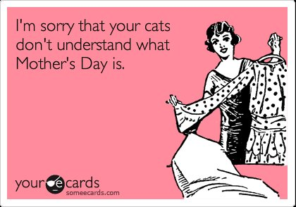 Happy Mother s Day to all you beautiful and wonderful mothers and dog cat mothers out there