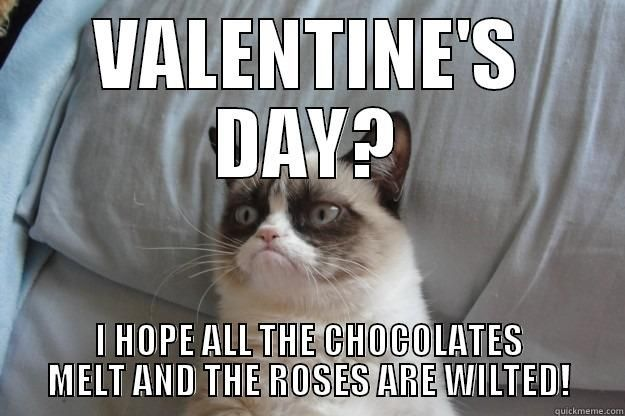 I HOPE ALL THE CHOCOLATES MELT AND THE ROSES ARE