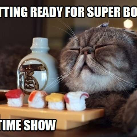 Take the Incredible Cat Half Time Funny Pictures