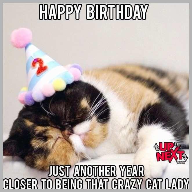 Best Figure Crazy Cat Lady Happy Birthday Meme Baby Babble