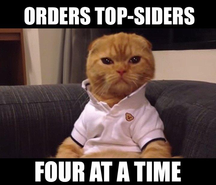 Preppy Cat Meme Top Siders