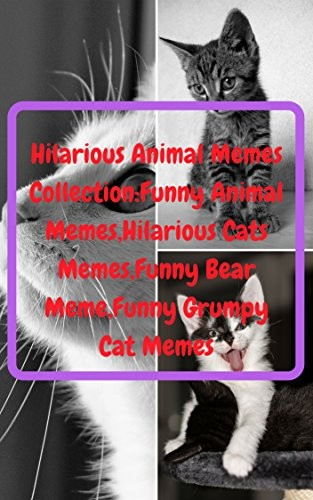 Hilarious Animal Memes Collection Funny Animal Memes Hilarious Cats Memes Funny Bear Meme