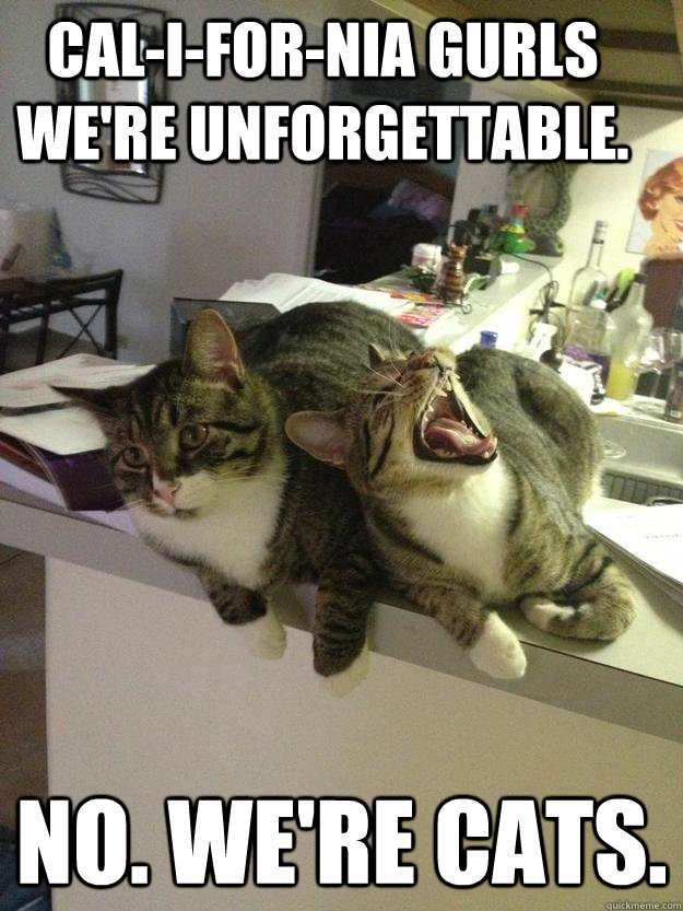 cal i for nia gurls we re unfor table No we re cats