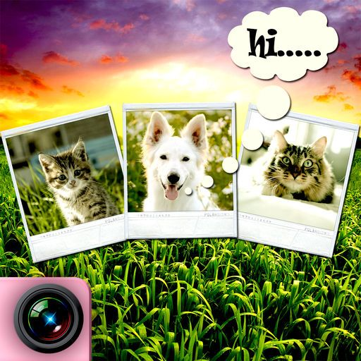 My talking pet Let s talk like funny best entertaining app FREE