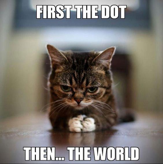 30 Really Hilarious Cat Pics funny cats Humor
