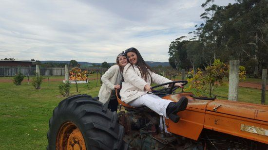 Ugly Duckling Wines Fun on the Tractor