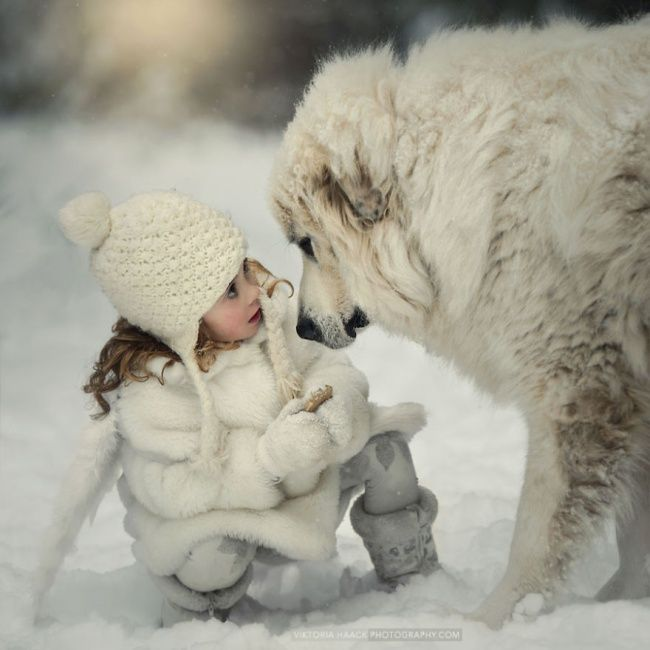 A child s best friend 25 wonderful children and their loving dogs