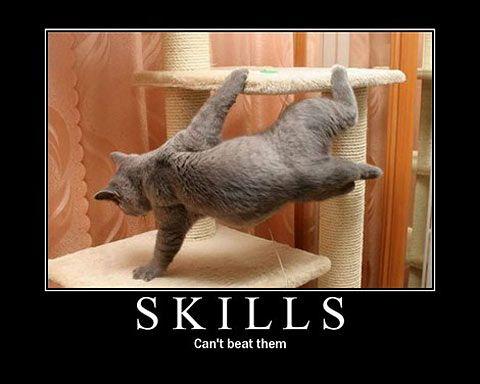 cat inspirational poster