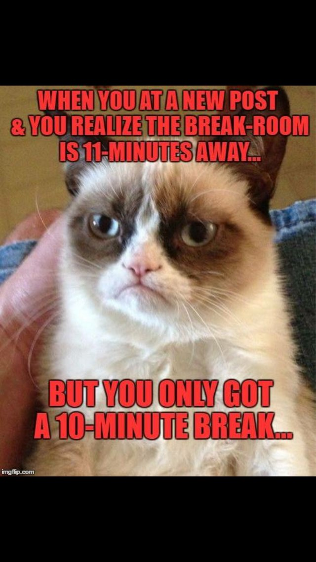 Grumpy Cat Christmas Memes.Grab The Luxury Funny Christmas Memes Grumy Cat Hilarious