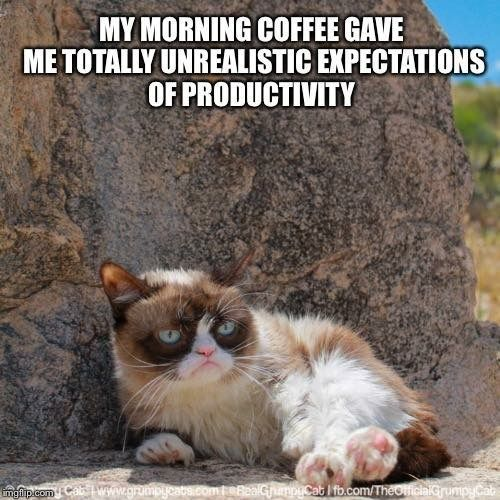 Grumpy Cat Meme Funny Animal Memes Funny Animal Animal Funnies Funny