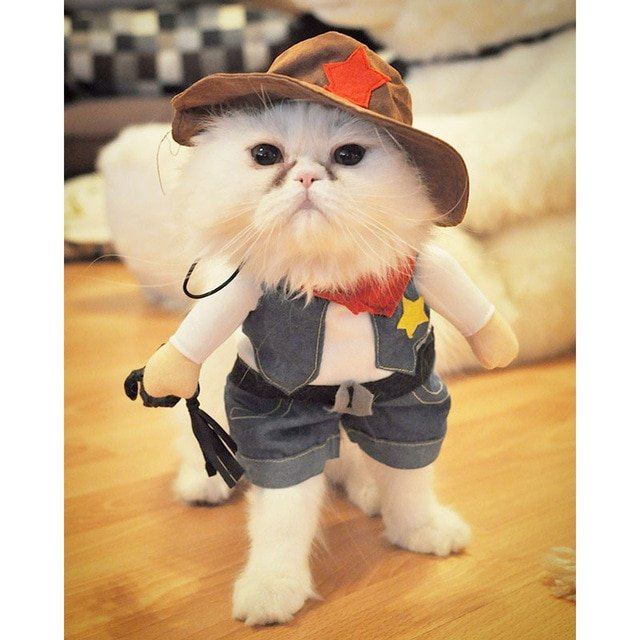 Funny Cat Costume Halloween Pet Cat Dog Clothes Creative Novelty Cat Kitten Clothes Cowboy