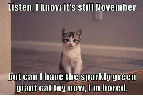 Funny Bored Meme Listen I Know It s Still November But Can I Have The Sparkly Green Giant Cat Toy