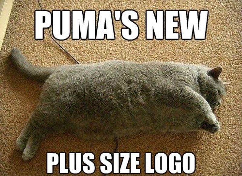 funny Puma plus size logo fat cat