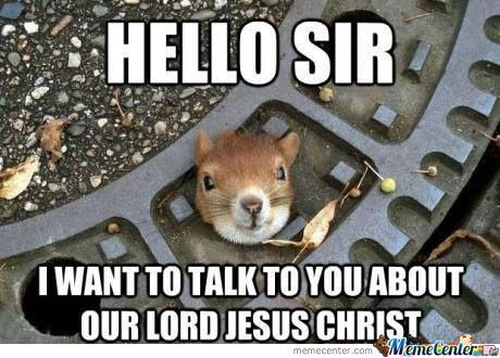 35 Very Funny Squirrel Meme And