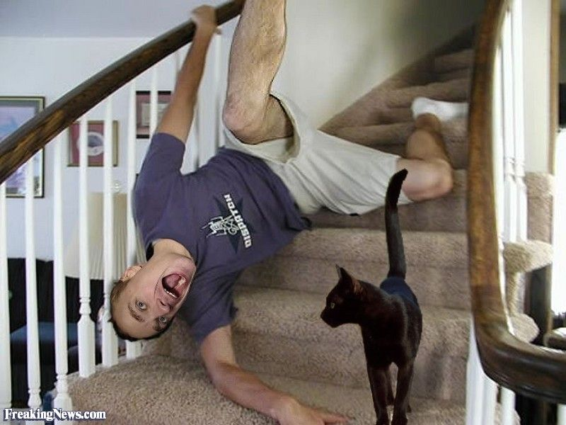 Black Cat Causes Man to Fall Down the Stairs