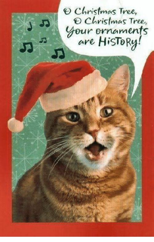 Christmas Grumpy Cat and Christmas Tree Christmas Tree Christmas Tree Dur ornaments are HiSTORy