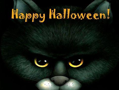 Happy Halloween Funny Cat 3