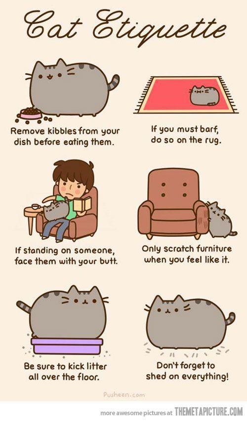 funny cute cat drawings clipart