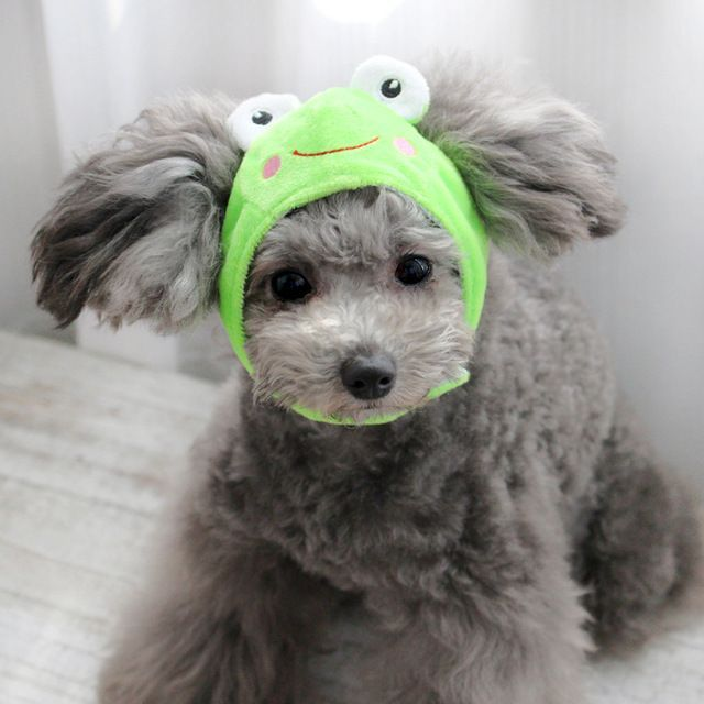 Animal Design Pet Dog Caps For Puppy Teddy Hat Dog Grooming Accessories