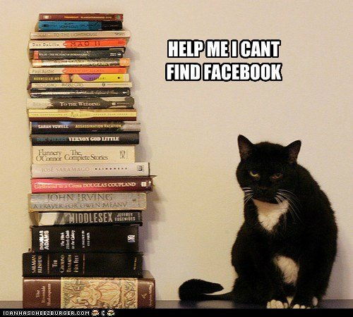 Watch the Fascinating Facebook Funny Cat Pictures